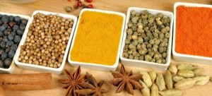 Indian Spices - Where can i Shop my favourite Indian Spices online