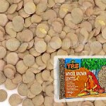brown-lentils-sabut-masoor-dal-whole-trs