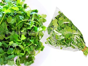coriander-leaves-kothamalli-fresh