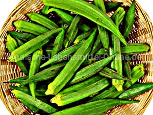 ladies-finger-okra-bhindi-vendaikkai-fresh-indian-vegetable