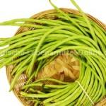 long-beans-fresh-indian-vegetables