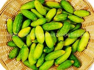 ivy-gourd-fresh-kovakkai-tindora